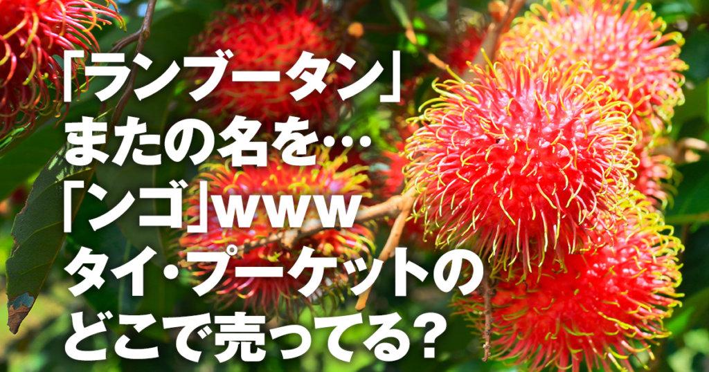 「タイ・プーケットで食べたいフルーツ「ンゴ」(ランブータン)!味はライチ?食べ方は?」のアイキャッチ画像